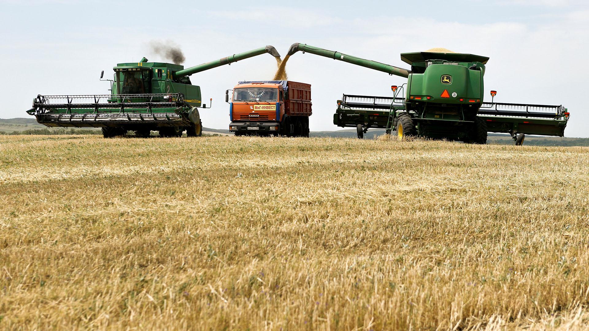 Картинка комбайн убирает пшеницу