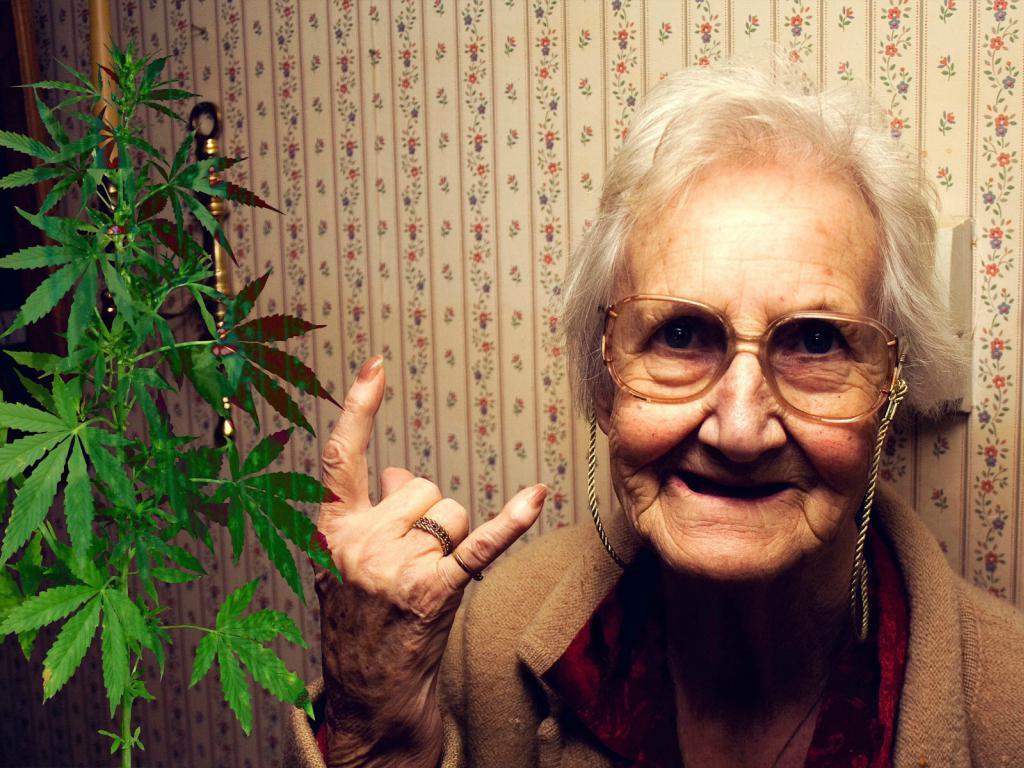 Así ayudaría la marihuana a los más grandes, según un nuevo ...